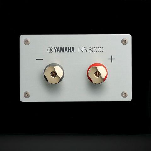Loa Yamaha NS-3000 2