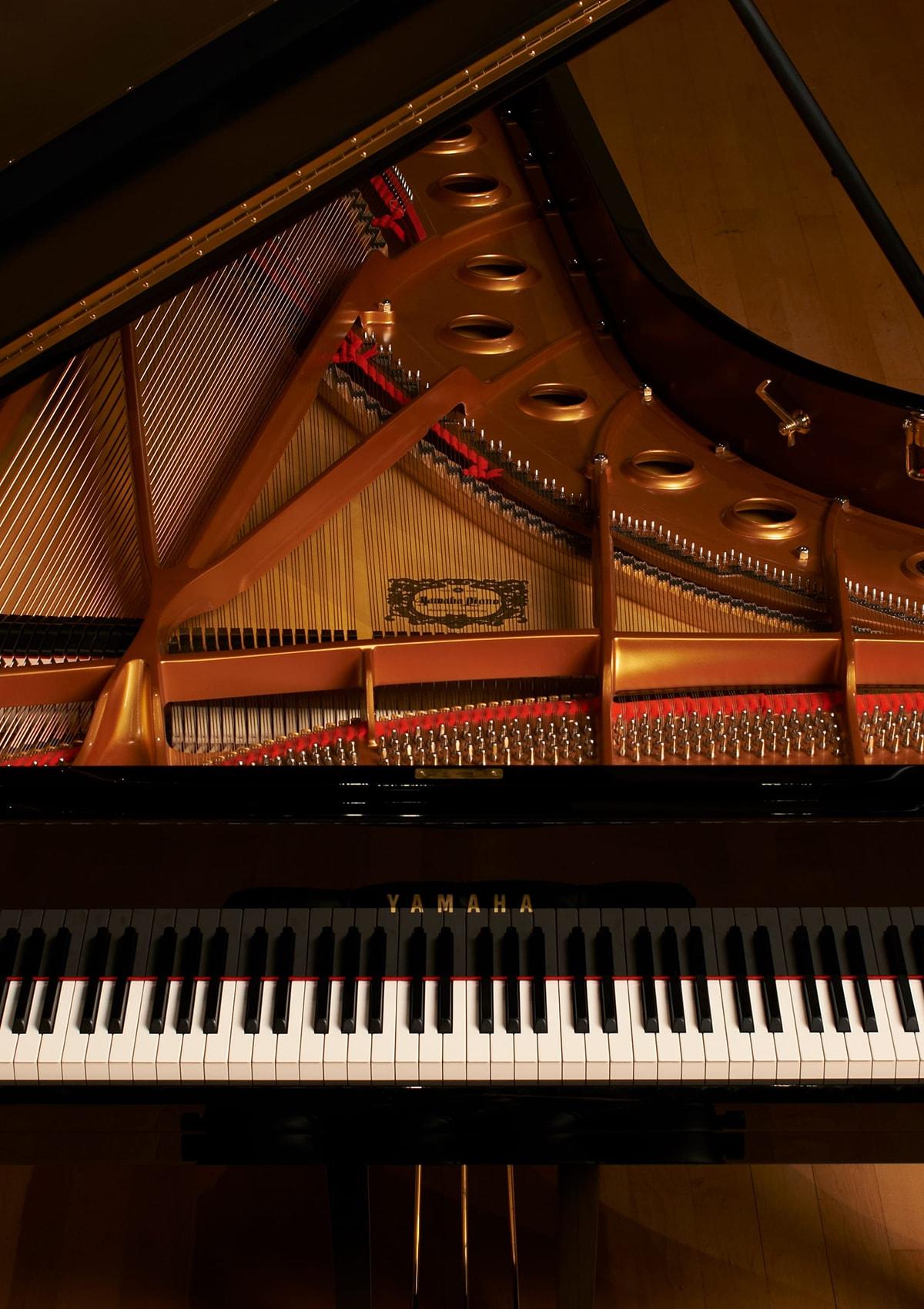 Đàn Piano - Nhạc cụ - Sản phẩm - Yamaha - Việt Nam