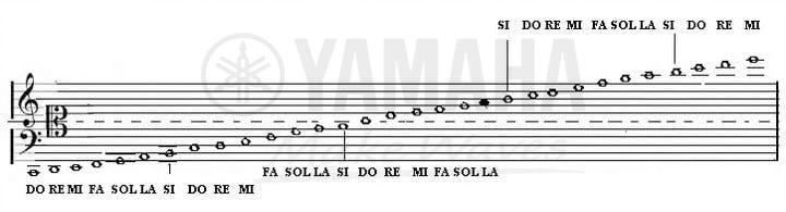 cách đọc nốt nhạc piano
