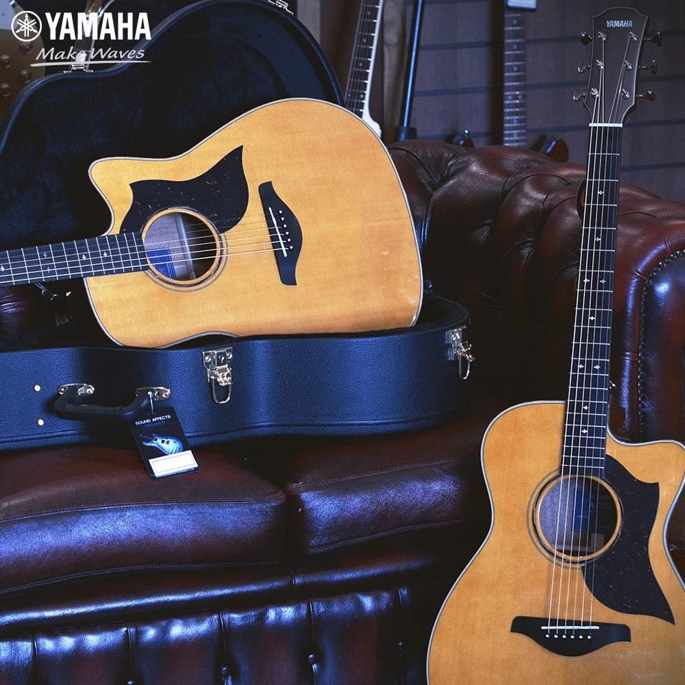 Mua đàn guitar acoustic cho người mới học hay đàn classic ...